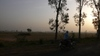 Rural_scenery